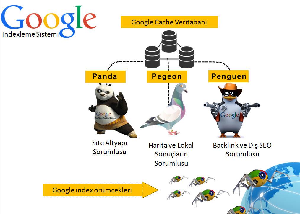 google-index-nedir